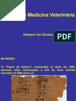 2 Veterinária História