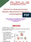 Meiosis y Game to Genesis