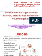 Meiosis y Game to Genesis