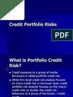 Credit Portfolio Risks
