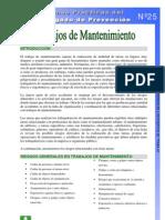 Ficha Práctica 25 Trabajadores de mantenimiento