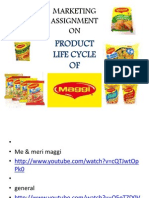 Maggi Product Life Cycle