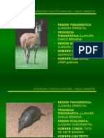 Fauna Llanura Suroriental