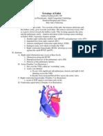 Tetralogy of Fallot Andrea Frederick RNNP