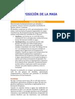 COMPOSICIÓN DE LA MASA