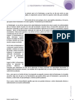 ACCUfisiate 2 Fisioterapia y Movimiento