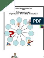 Psihopedagogia Copilului Cu Dificultati de Invatare Final - Copy