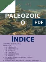 PALEOZOICO