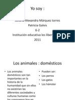 juliana animales domesticos - carnivoros - herbívoros