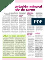 Periódico Lechuza Roja - Suplementación Mineral en Ganado de Carne