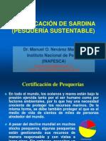 Manuel Nevarez