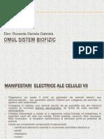OMUL SISTEM BIOFIZIC (1)