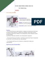 Los musculos (ejercicios basicos)