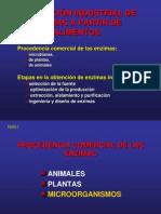 PRODUCCION DE ENZIMAS