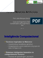 RNA_Ifes_2011_1