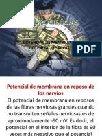 potencialdemembrana-090410013910-phpapp01