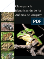 Ziegler Maneyro 2008 Anfibios de Uruguay
