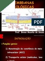 Aula 03_Membranas biolA³gicas