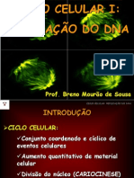 Aula 12_Ciclo Celular I - Replicacao Do DNA