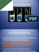 12 INGENIERIA GENETICA