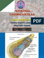 01 Patologia Vascular