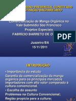 MODELO DE SLIDE PARA APRESENTAÇÃO DE TCC ADMINISTRAÇÃO