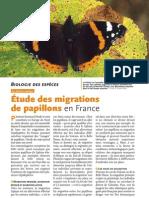 Étude des migrations de papillons en France
