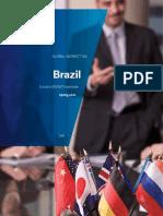 Brazil 2011 Vat Gst