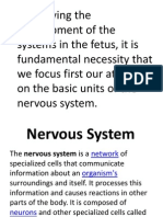 The Nervous System. Prelims
