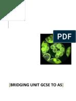 Bridging Unit GCSE to As