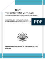 Thermo Lab Final
