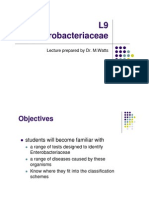 Enterobacteriaceae Curs