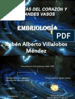 8312602 AnomalIas Del CorazOn y Grandes Vasos
