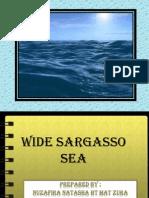 Wide Sargasso Sea (Dayang)