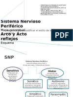 SNP Mapa Conceptual
