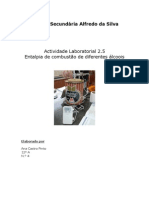 Qui12 Relatorio Al2-5 Entalpia de Combustao de Diferentes Alcoois Anapinto