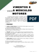 Movimentos e Seus Musculos Motores