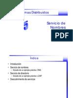 servicio_nombres-1pp