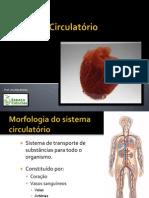 CN9-Sistema Circulatório