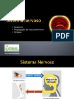 CN9-Sistema nervoso2
