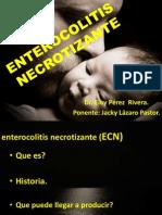 Enterocolitis Necrotizante Neonatal