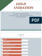 Gold Cyanidation Presentation