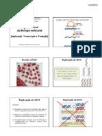 4_-_Dogma_central_da_biologia_molecular_(Replicação,_transcrição_e_tradução)