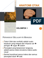 Power Point Anatomi Otak JADI