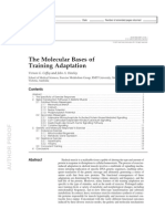 The Molecular Bases of Training Adaptation