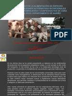 EXPERIENCIAS EN LA ALIMENTACIÓN DE ESPECIES PECUARIAS UTILIZANDO ALTERNATIVAS NUTRICIONALES