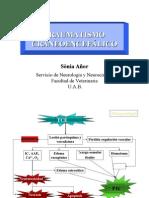 Www.unlock-PDF.com Traumatismo Craneoencefalico