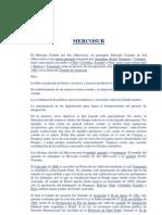 Mercosur_TPInternacional