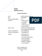 laporan c organik