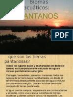 Biomas acuáticos